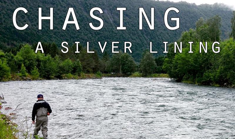 silver_cover_vimeo_tag